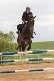 特写镜头观点的一匹棕色马的美丽的女骑士 库存照片