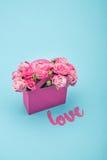 特写镜头观点的在纸箱和爱标志的美丽的开花的桃红色玫瑰 免版税库存照片