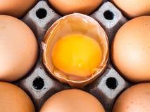 特写镜头观点的未加工的鸡 每个鸡蛋是一个黄色鸡蛋 免版税库存照片