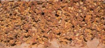 特写镜头详述红土带石头纹理在佛教寺庙的 库存图片