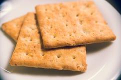 特写镜头说谎在白色板材的燕麦薄脆饼干 免版税库存照片