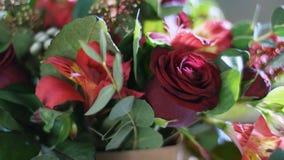 特写镜头,在光的花花束,自转,构成包括德国锥脚形酒杯,罗斯声望, Brunia 股票视频
