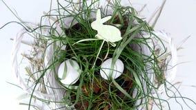 特写镜头,从上面看法,自转,在土气样式的花卉复活节构成,包括鸡蛋,绿色植物,吠声 股票视频