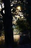 特别秘密专用场所在美丽的乡下 库存图片