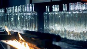 特别设备在植物烧有火的玻璃瓶 4K 影视素材