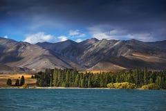 特卡波湖,新西兰 库存图片