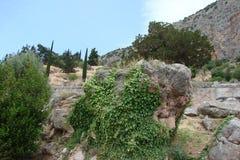 特尔斐镇希腊 06 17 2014年 落矶山脉的本质的风景在特尔斐附近镇的希腊的南部的 库存图片