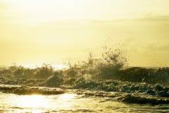 默特尔海滩和波浪 免版税库存图片