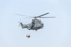 特技直升机驾驶在城市的天空的训练 美洲狮elicopter,海军钻子 Aeroshow 免版税库存图片
