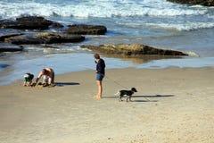 特拉维夫,以色列– 11月30 :未知的家庭在度假在地中海的201的11月30日, Tel巴鲁克海滩的 免版税库存照片
