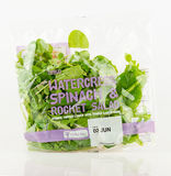特易购袋子水田芥、菠菜和火箭沙拉 图库摄影