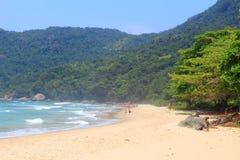 特林达迪海滩,巴西 免版税库存图片