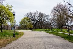 特森公园春天风景有花的在巴尔的摩3月 免版税库存照片