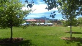 特立尼达农夫市场 免版税库存照片