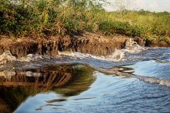 特立尼达河反射 免版税库存图片