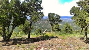 特立尼达科罗拉多山顶视图 库存图片