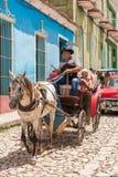 特立尼达,古巴- 2017年5月16日:在鞔具的马在城市街道上 特写镜头 垂直 免版税库存照片