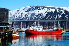 从特罗姆瑟,挪威的风景 库存图片