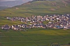 特里滕海姆村庄在河的葡萄园里 库存照片