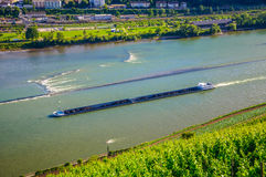特长驳船船在B附近运输在莱茵河的煤炭 免版税库存照片