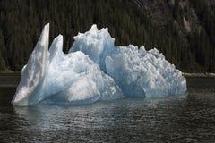 特雷西胳膊冰山 免版税库存照片