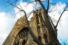 特鲁罗大教堂,康沃尔郡,英国 库存照片