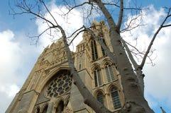 特鲁罗大教堂,康沃尔郡,英国 库存图片