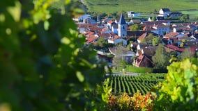 彻特des的香宾葡萄园禁止奥布省部门的区域近到巴罗维尔,香宾阿尔登 影视素材