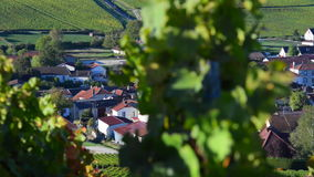彻特des的香宾葡萄园禁止奥布省部门的区域近到巴罗维尔,香宾阿尔登 股票录像