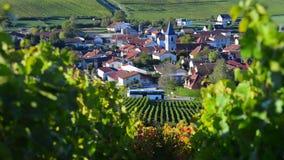 彻特des的香宾葡萄园禁止奥布省部门的区域近到巴罗维尔,香宾阿尔登 股票视频