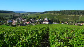 彻特des的香宾葡萄园禁止奥布省部门的区域 影视素材