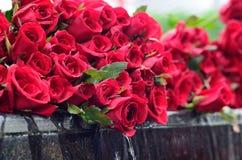 牺牲。红色玫瑰 免版税库存照片