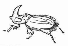犀牛甲虫 黑白手拉的剪影 皇族释放例证