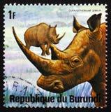 犀牛白犀属simun,系列动物布隆迪,大约1975年 免版税库存图片