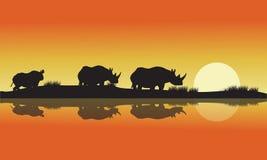 犀牛非洲小山的剪影 免版税库存照片