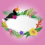 犀鸟和花卉有拷贝空间背景 免版税库存照片