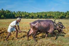 犁农业领域用传统方式的农夫 免版税库存照片