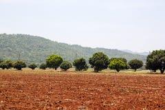 犁土地准备好耕种 免版税图库摄影