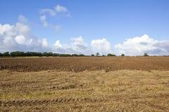 犁土壤和森林地 库存照片