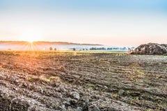 犁在收获领域以后在基辅附近,乌克兰 在清早领域的雾 与明亮的颜色的一个农村风景 免版税库存图片