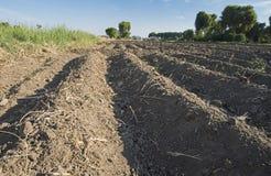 犁沟特写镜头在被耕的可耕的领域的 免版税图库摄影