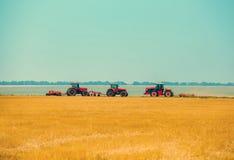 犁的夏日三拖拉机,犁在倾斜的土壤,玉米田 免版税图库摄影