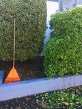 犁耙和叶子在家庭菜园 免版税库存照片