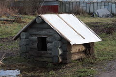 犬小屋在庭院里 免版税库存照片