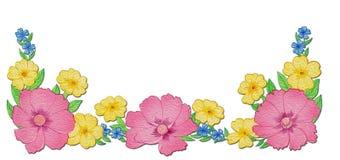 犬蔷薇、报春花和勿忘草 免版税库存照片