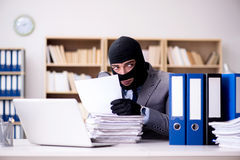 犯罪商人佩带的巴拉克拉法帽在办公室 免版税图库摄影