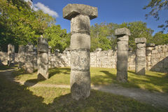 状况的在奇琴伊察,在尤卡坦半岛,墨西哥的玛雅废墟专栏周围的象草的庭院 免版税库存图片