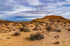 犹他沙漠的沙漠足迹 免版税库存照片