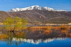 犹他的积雪覆盖的Wasatch山 免版税库存图片