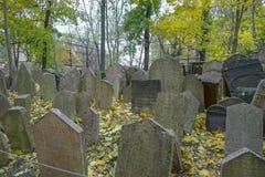 犹太公墓在布拉格在捷克 免版税库存图片